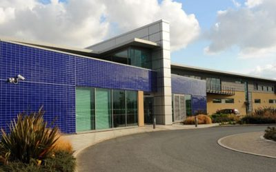 We're Now Working With Everton FC!